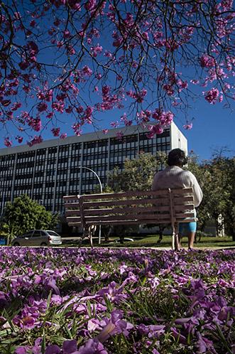Brasília – 007